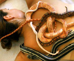 snake-massage-israel-cv